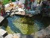 Декоративний басейн