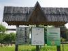 Сюди проходить еколого-пізнавальна стежка «Дубина»