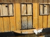 Бджолина адміністрація в неділю закрита