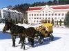Бричка в центрі Косова