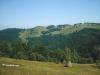Карпатські полонини влітку