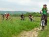 Їдемо лугами до села Кобаки