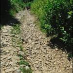 Кам'яна дорога