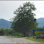 Берегомет