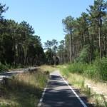Велодоріжка вздовж другорядної дороги, прокладена спеціально до зльоту в Муртозі