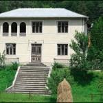 Господарство у селі Соколівка на Косівщині