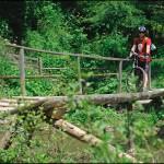 Дерев'яна кладка через річку
