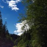 Ґрунтова дорога аж до самої Річки
