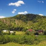 Навколишні гори в Шешорах: хребет Брусний (960 м), Кормитура (916 м), Росохата (791 м), Пасічний (695 м), Радул (690 м), Млаки (687 м), Кінь