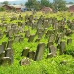 Старий єврейський цвинтар. Дивина! Знайшлась випадково