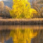 Озеро ВХО «Гуцульщина»