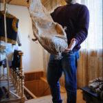Ярослав демонструє дідову шкіряну торбу