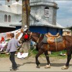 Змішались в купу коні-люди…